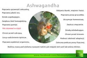 ashwaganda mielona (1)